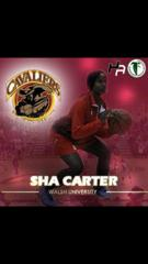 SHA DAT DEAL CARTER