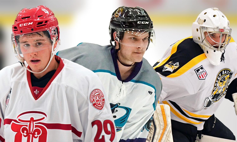 USHL: Players Of The Week - Week 8, 2017-18