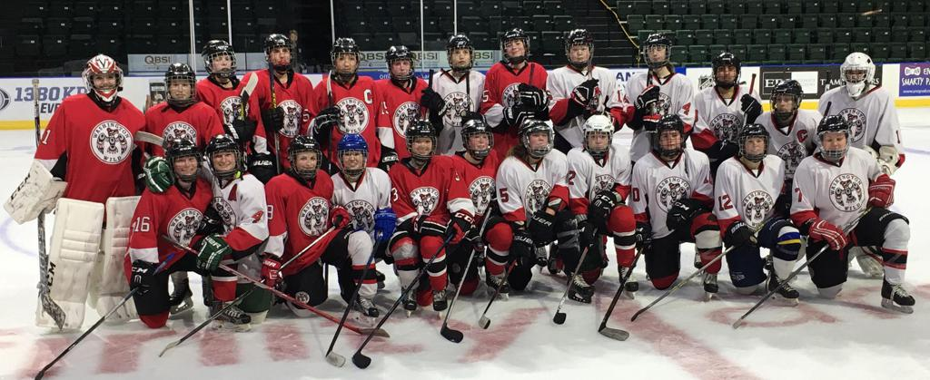 2016 WWFHA Alumnae Game - 2nd Annual Event