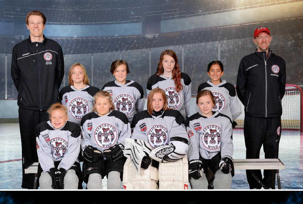 10U Grey WWFHL Team, 2017-2018