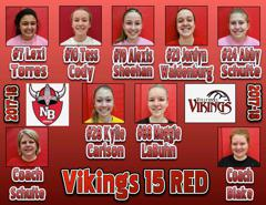 17 18 viking volleyball small
