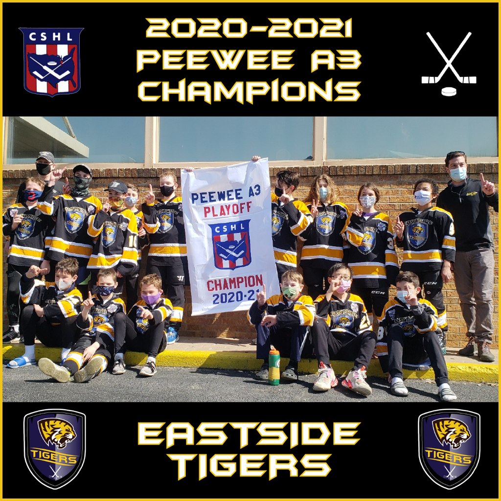 Congrats to the 12U Eastside PeeWee A3 CSHL Playoff Champions!