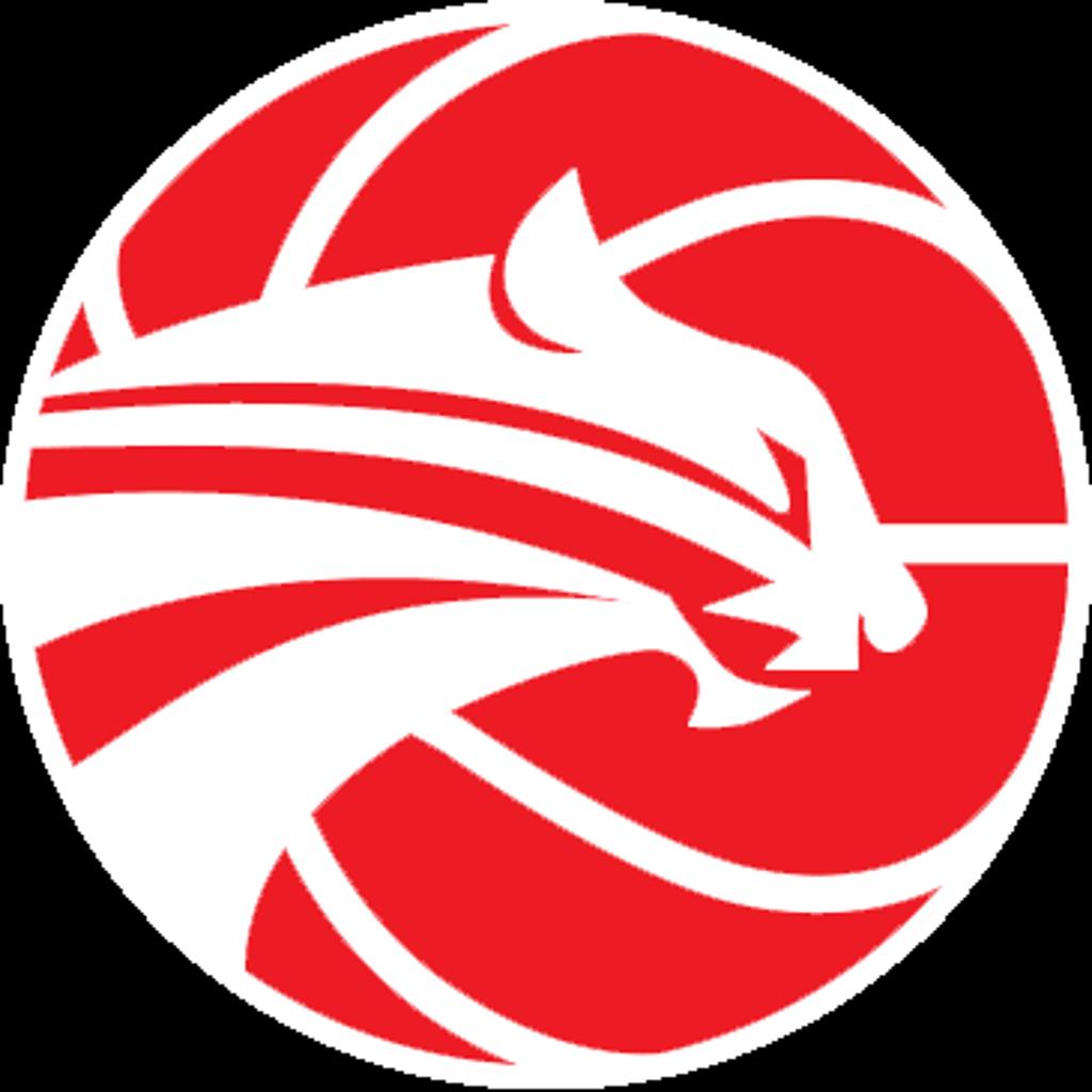 Campo Hoops Logo
