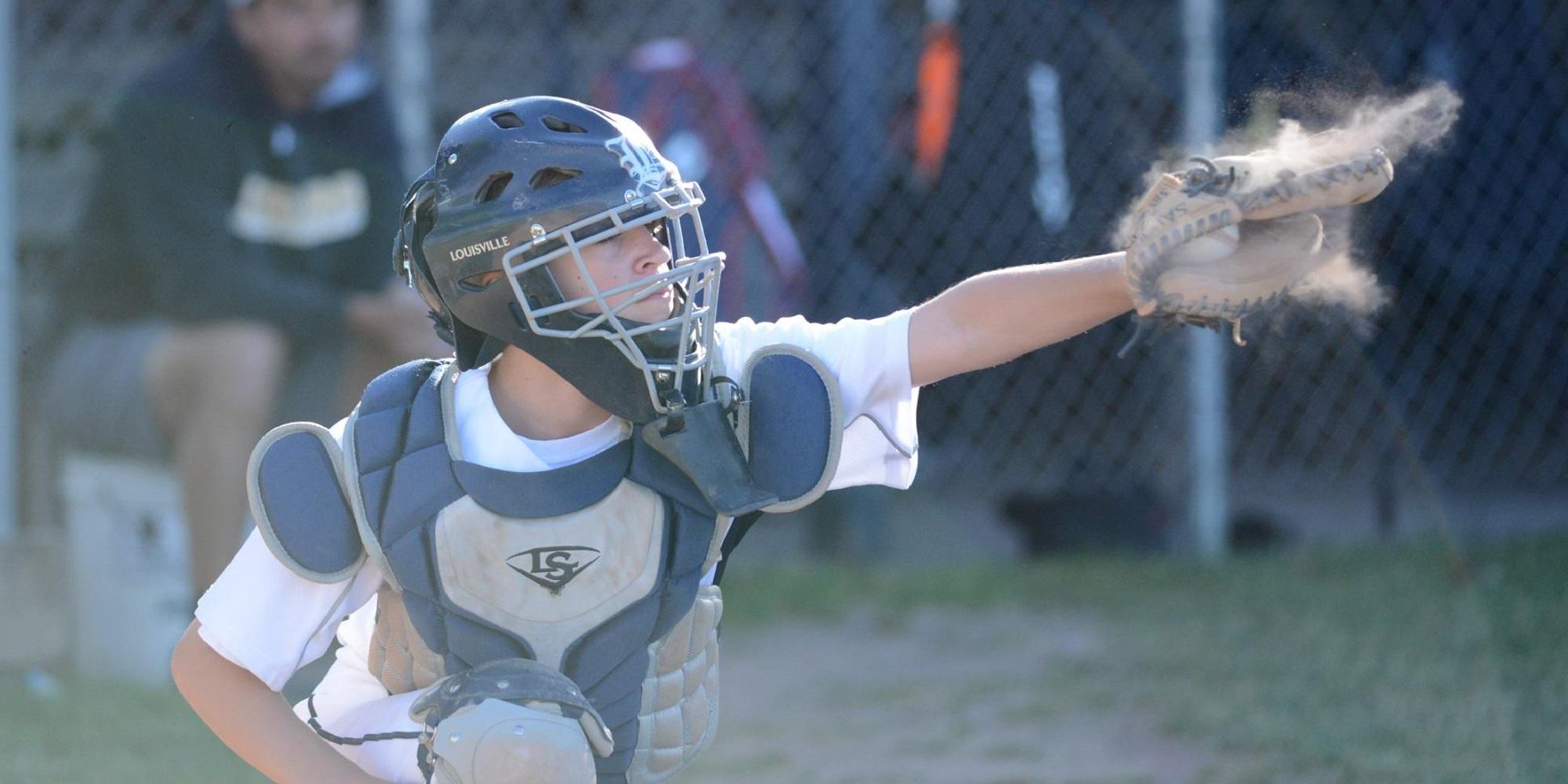 Monroe County Baseball Region