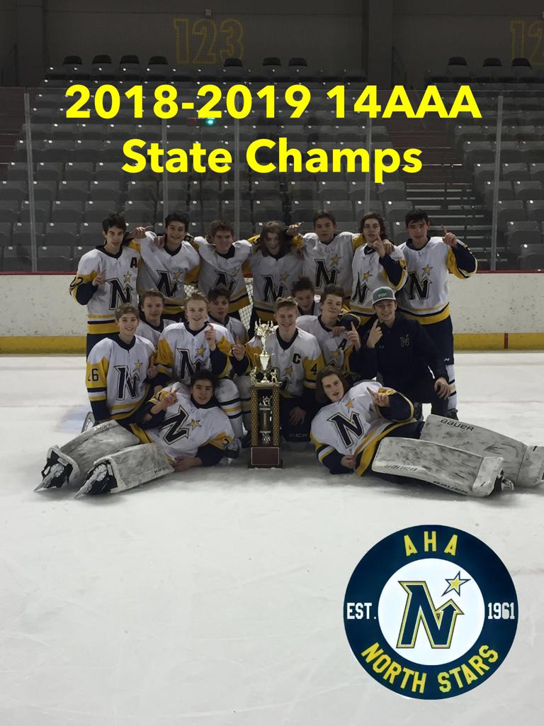 North Stars 14aaas Win State Championship