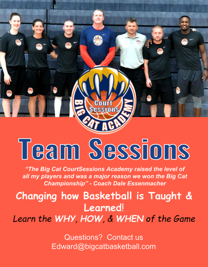 Team Sessions Flyer