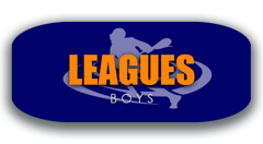 New Wave Lacrosse Boys Leagues