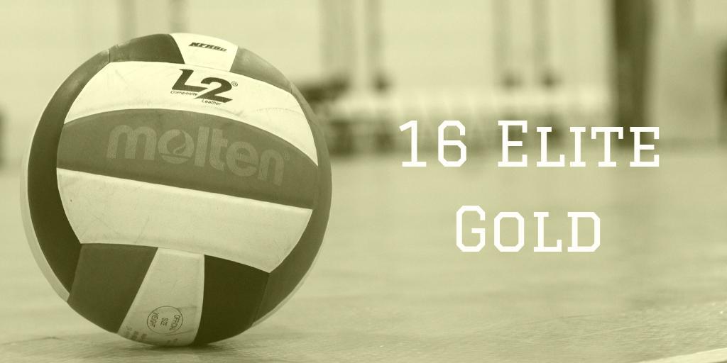 16 Elite Gold