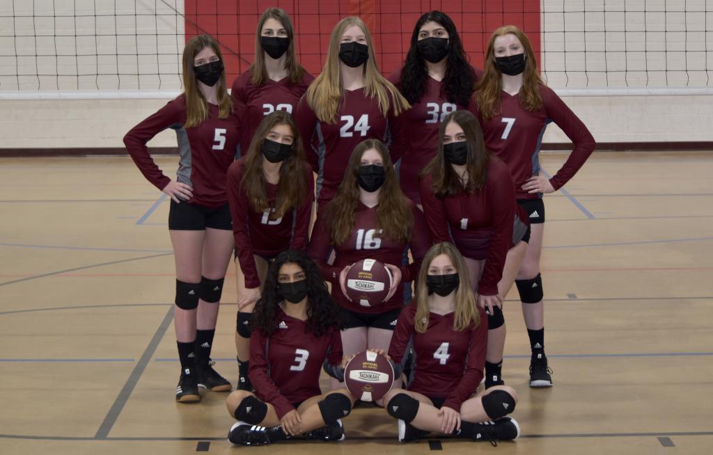 Fierce Elite Volleyball Club 15U