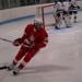 Adam hockey small