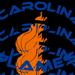 Carolinaflames small