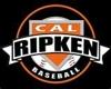 Sponsored by Cal Ripken Experience