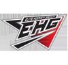 Elite hockey group element view