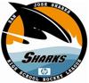 Sponsored by High School Hockey