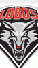 Sponsored by UNM LOBO VOLLEYBALL