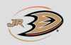 Sponsored by Anaheim Ducks Youth Hockey (Calif.)