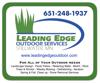 Leading edge element view