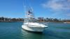 Sponsored by Finatic Sportsfishing Baja