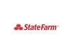 2017 state farm element view