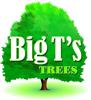 Sponsored by Big T's Trees