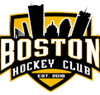 Boston hockey club element view