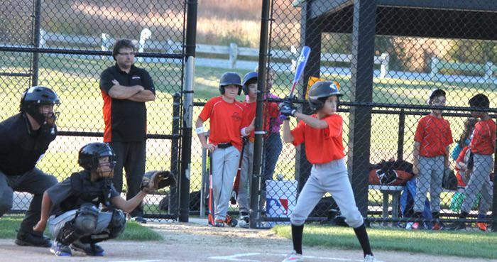 Wayland Little League Coaching