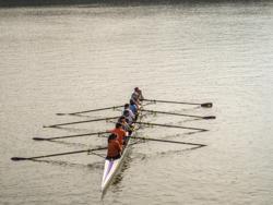 Spring Rowing